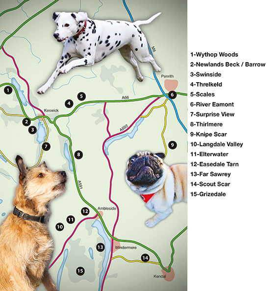 overall map of Dog Friendly Pub Walks in the Lake District