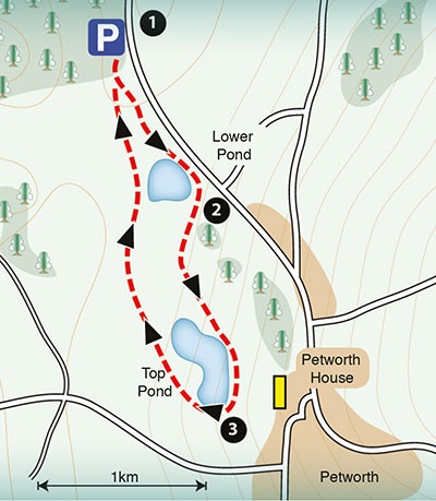 sample map of a walk around Petwoth House