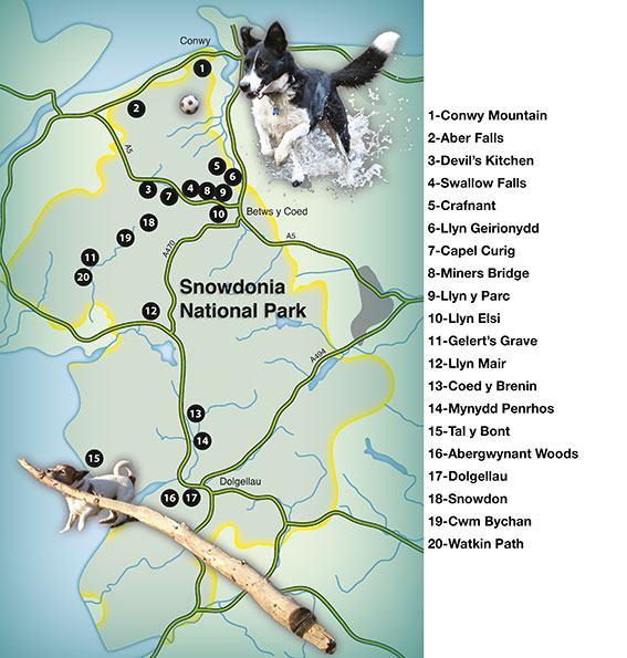 overall map of Countryside Dog Walks Walks in Snowdonia
