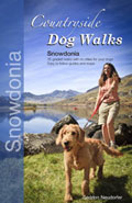 Countryside Dog Walks in Snowdonia book cover